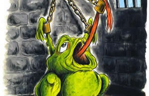 La rana (bollita) è servita